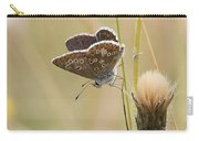 A Brown Argus On Stem Carry-all Pouch