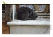 A Circled Up Cat  Carry-all Pouch by Lainie Wrightson