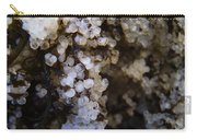A Closer Look Herring Roe Carry-all Pouch
