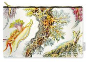 A Collection Of Nudibranchia Carry-all Pouch