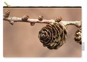 A Conifer Cone On A Tree Branch Carry-all Pouch