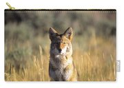 A Coyote Canis Latrans Stares Carry-all Pouch