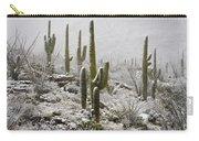 A Desert Blizzard  Carry-all Pouch by Saija  Lehtonen