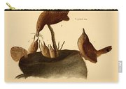 A Family Of House Wrens Carry-all Pouch