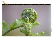 A Fiddlehead Abstract Carry-all Pouch