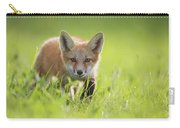 A Fox In The Grass  Montreal, Quebec Carry-all Pouch