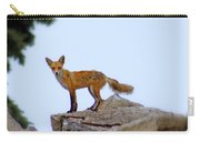 A Fox On The Rocks Carry-all Pouch