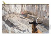 A Goat Hanging Out At The Base Carry-all Pouch
