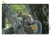 A Gray Squirrel Pose  Carry-all Pouch