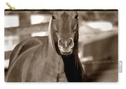 A Horse Is A Horse II Carry-all Pouch