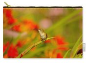 A Humming Bird Perched Carry-all Pouch