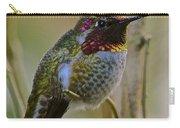 A Hummingbird Rainbow Carry-all Pouch