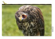 A Juvenille Peregrine Falcon Carry-all Pouch