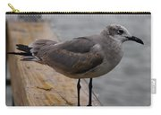 A Laughing Gull Carry-all Pouch
