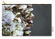A Lichen Abstract 2013 Carry-all Pouch