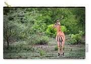 A Male Impala In Lake Manyara National Park. Tanzania. Africa. Carry-all Pouch