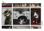 A Montage Of Kittens Carry-all Pouch