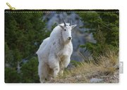 A Mountain Goat Stands On A Grassy Carry-all Pouch