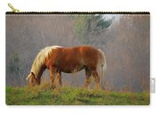 A November Horse Carry-all Pouch