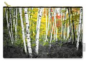 A Painting Autumn Birch Grove Carry-all Pouch