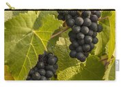 A Pair Of Clusters Carry-all Pouch by Jean Noren