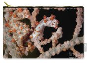 A Pair Of Pygmy Seahorse On Sea Fan Carry-all Pouch
