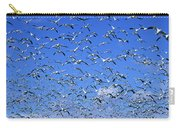 A Panoramic Of Thousands Of Migrating Carry-all Pouch