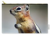 A Profile In Chipmunk Carry-all Pouch