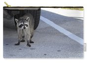 A Raccoon In Florida Carry-all Pouch