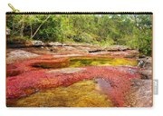 A Red And Yellow River In Colombia Carry-all Pouch