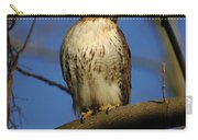 A Red Tail Hawk Carry-all Pouch
