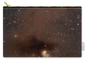 A Rich Region Of Reflection Carry-all Pouch