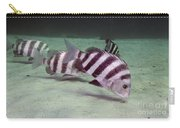 A School Of Sheepshead Feeding Carry-all Pouch by Michael Wood
