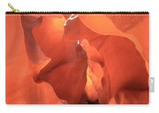 A Sculpted Walkway Carry-all Pouch