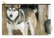 A Sled Dog Stands By Its Kennel Carry-all Pouch