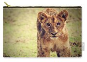 A Small Lion Cub Portrait. Tanzania Carry-all Pouch