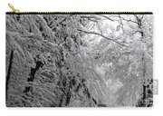 A Snowy Drive Through Chestnut Ridge Park Carry-all Pouch