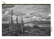 A Sonoran Winter Day In Black And White  Carry-all Pouch