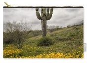 A Southwestern Style Spring Carry-all Pouch