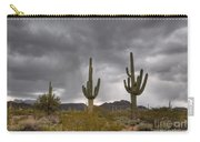 A Storm In The Sonoran Desert Carry-all Pouch