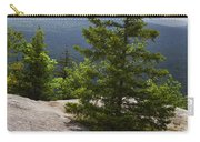 A View From A Mountain In A Vermont State Park Carry-all Pouch