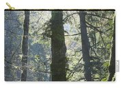 Above The Firs Carry-all Pouch