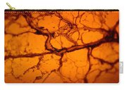 Abstract In Amber Carry-all Pouch