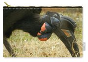 Abyssinian Ground Hornbill Carry-all Pouch