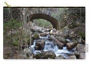 Acadia National Park Bridge Carry-all Pouch
