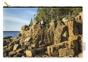 Acadia Seascape Carry-all Pouch