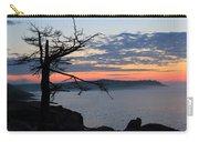 Acadia Sunrise 2 Carry-all Pouch