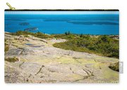 Acadia Views Carry-all Pouch