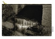Acadia Waterfall Carry-all Pouch