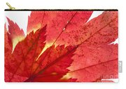 Acer From Beneath Carry-all Pouch